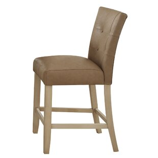 Neponset Dining Chair (Set of 2)
