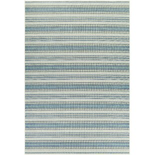 Blue Outdoor Rugs You Ll Love Wayfair