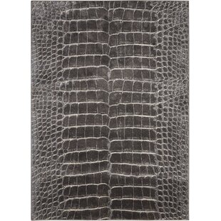 Bourgogne Charcoal Area Rug by World Menagerie