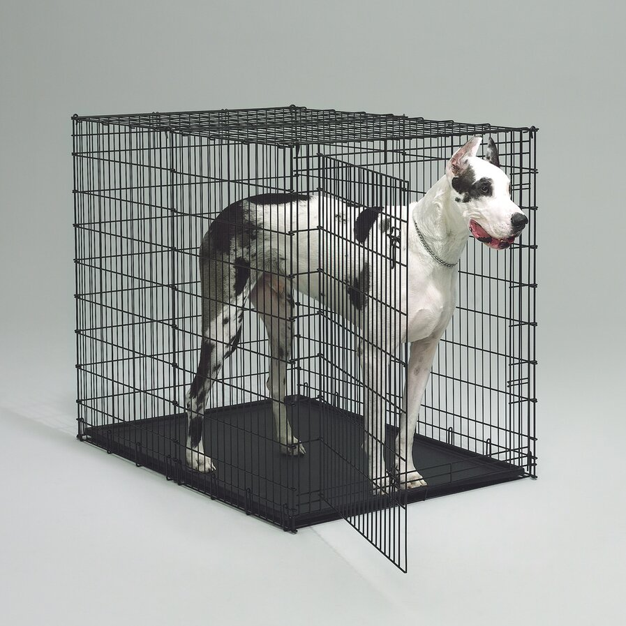 12x18 large dog kennels