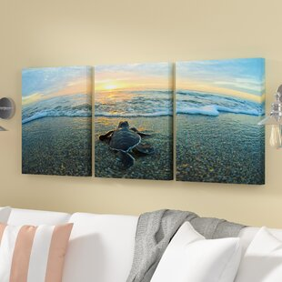 U0027Turtleu0027 Photographic Multi Piece Image On Canvas In Blue/Sand/Brown/Yellow