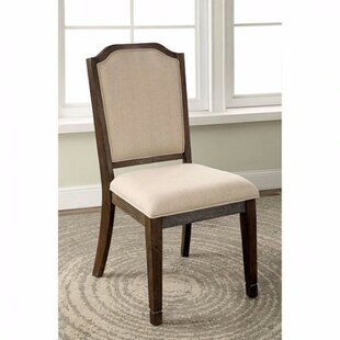 Arvin Dining Chair (Set of 2)