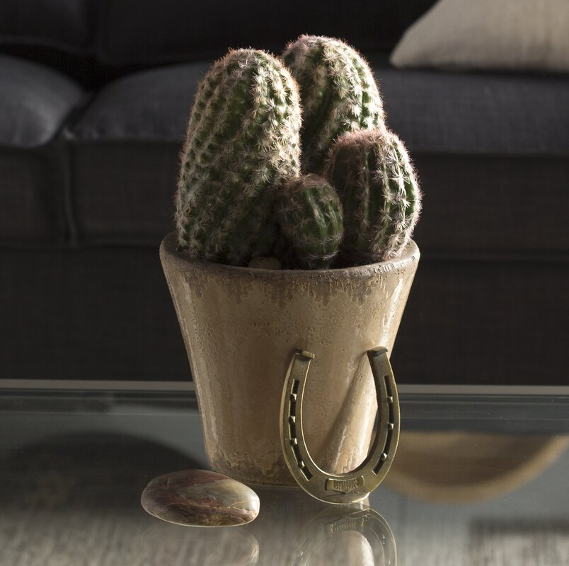 Cactus Garden Plant With Ceramic Planter Nearly Natural Reviews.  Pleasurable Inspiration ...