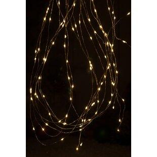 Warm Branch 120 Light String Lighting by The Seasonal Aisle