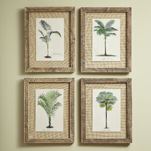 Palm Tree Framed Prints (Set Of 4)