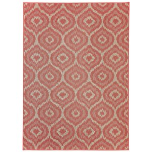 Aker Red Indoor/Outdoor Area Rug