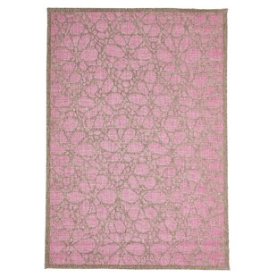 Pink/Brown Indoor/Outdoor Area Rug by Home Loft Concept