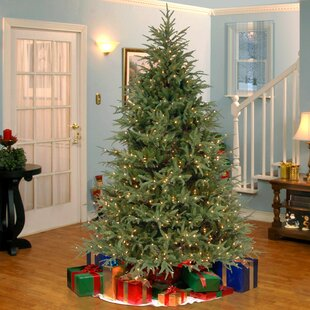 75 frasier green artificial christmas tree with 1000 clear lights and stand - Outdoor Artificial Christmas Tree
