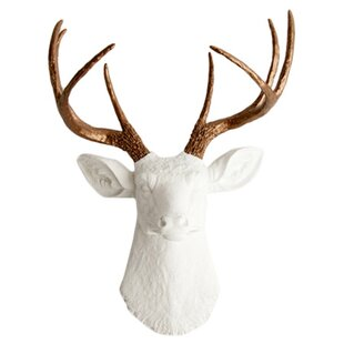 Deer Wall Décor By White Faux Taxidermy