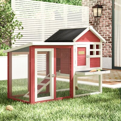 Small Pet Housing Cages Hutches Amp More You Ll Love