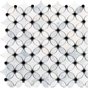 Florita Pattern Polished Marble Mosaic Tile In White Black