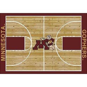 NCAA College Home Court Minnesota Novelty Rug
