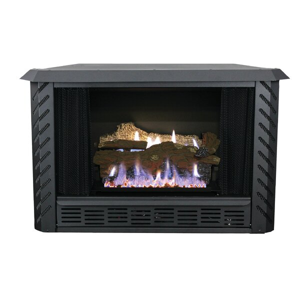Ashley Hearth Vent Free Propane Fireplace Insert & Reviews | Wayfair