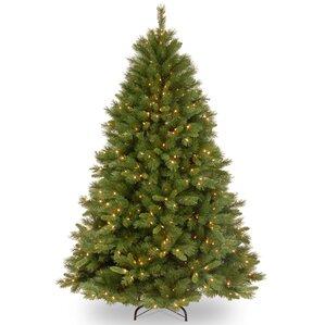 modern christmas trees allmodern - Small Christmas Tree With Lights