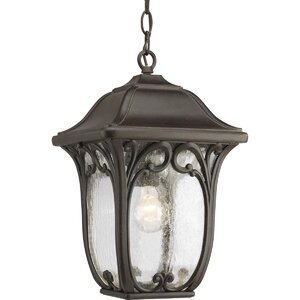 Triplehorn 1-Light Hanging Seeded Lantern