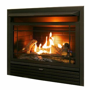 Find The Perfect Natural Propane Gas Wood Burning Fireplaces