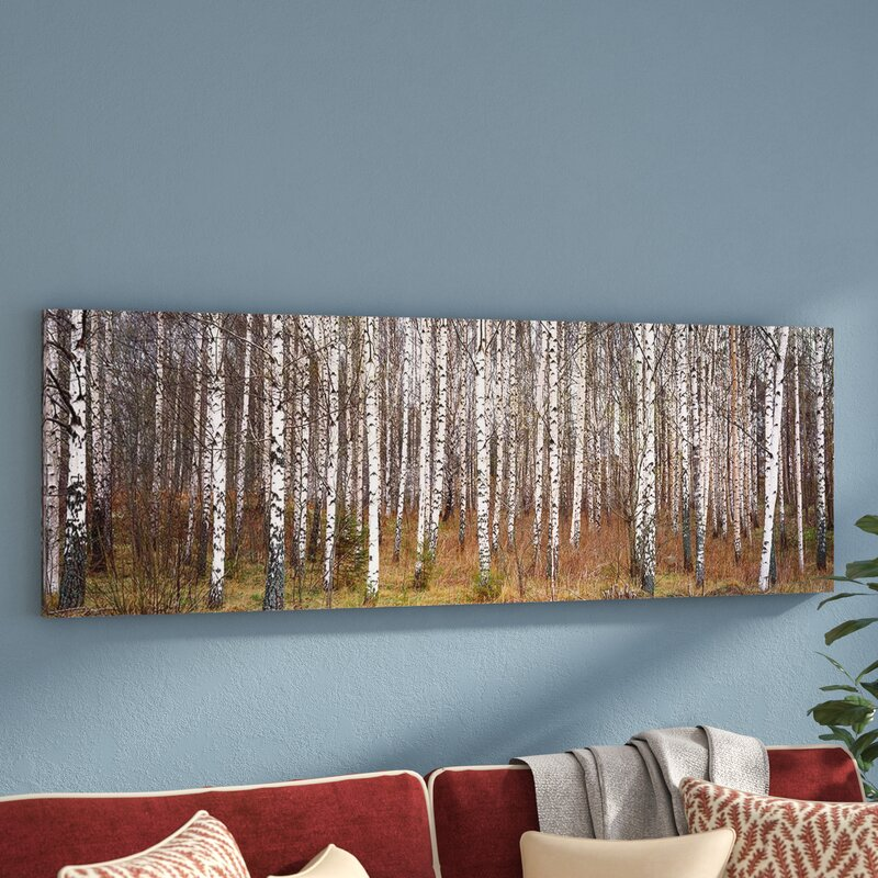 Three Posts Birch Trees In A Forest Framed Photo Graphic