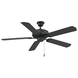 Outdoor ceiling fans youll love wayfair 52 blomquist 5 blade ceiling fan aloadofball Image collections