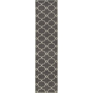 Best Choices Parke Black/White Indoor/Outdoor Area Rug By Breakwater Bay