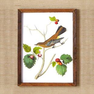 Woodland Birds Wall Art I