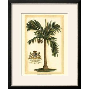U0027British Colonial Palm Iu0027 Framed Print