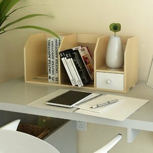 Desk Storage Shelf with Bin