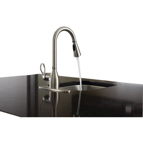 Charmant Kleo Single Handle Kitchen Faucet With Reflex™ And Duralock™