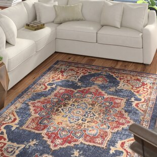 Dulin Blue/Rust Red Area Rug