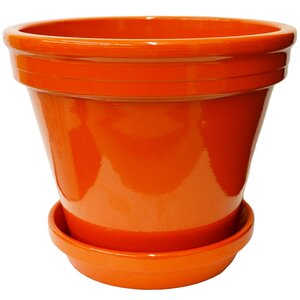Terracotta Pot Planter with Saucer