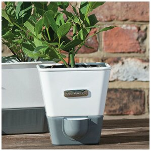 Indoor Herb Garden Self-Watering Carbon Steel Pot Planter