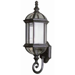 Powell 1 Light Outdoor Sconce