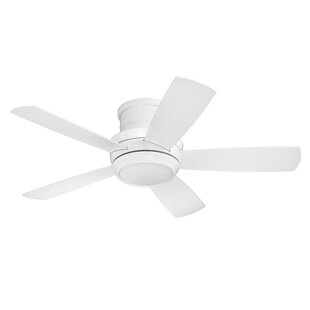 Modern contemporary ceiling fans allmodern save aloadofball Images
