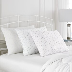 Abbeville Polyfill Pillow by Laura Ashley Home