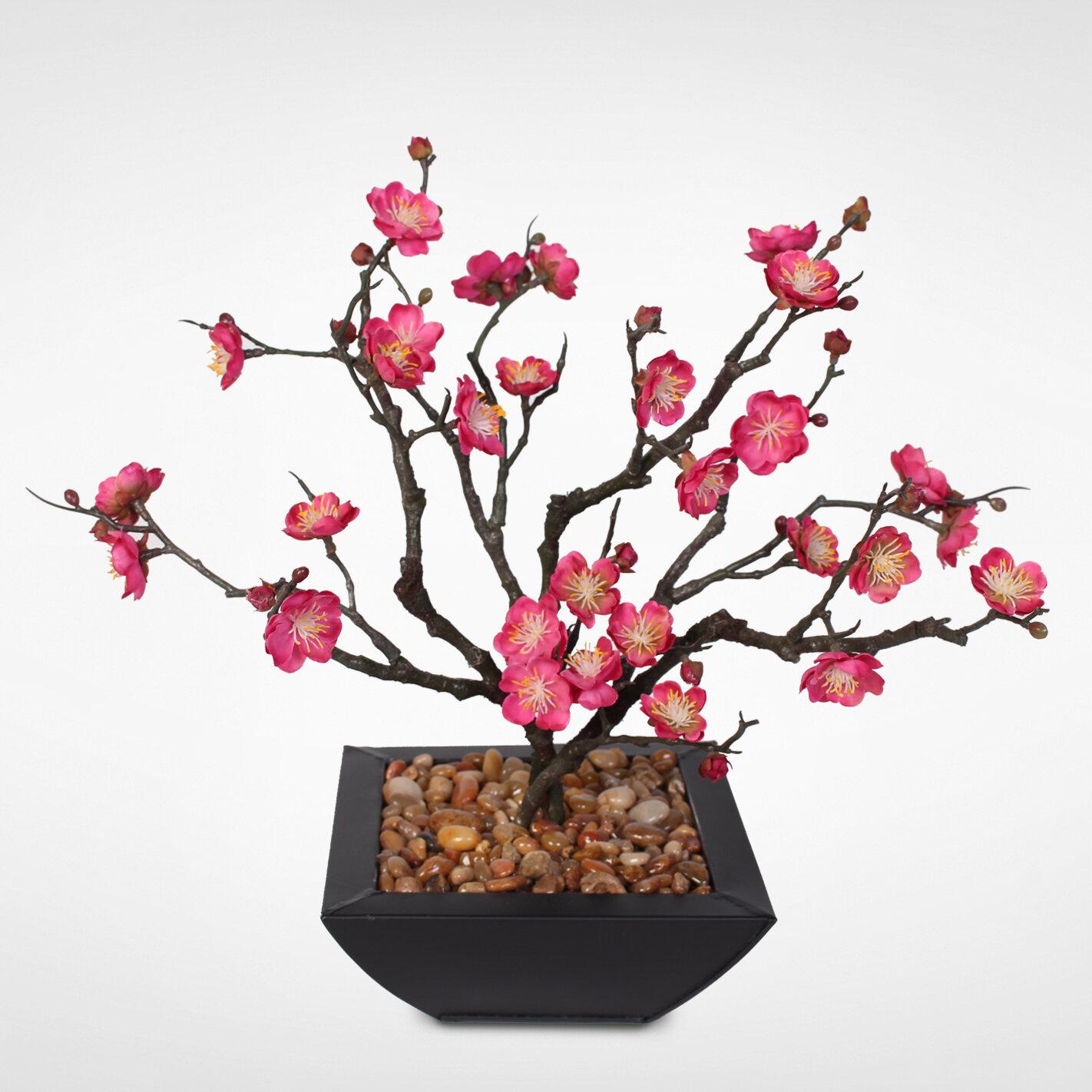 Bloomsbury Market Desktop Silk Plum Blossom Bonsai Tree in Planter | Wayfair
