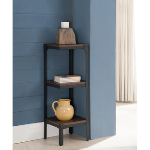 3 Tier Corner Unit Bookcase  sc 1 st  Wayfair & 3 Tier Plate Rack | Wayfair