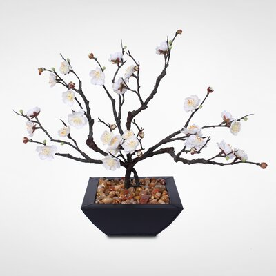 Desktop Plum Blossom Bonsai Tree With Natural Rocks In Planter