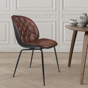 Pardo Back Powder Coated Dining Chair (Set of 2)