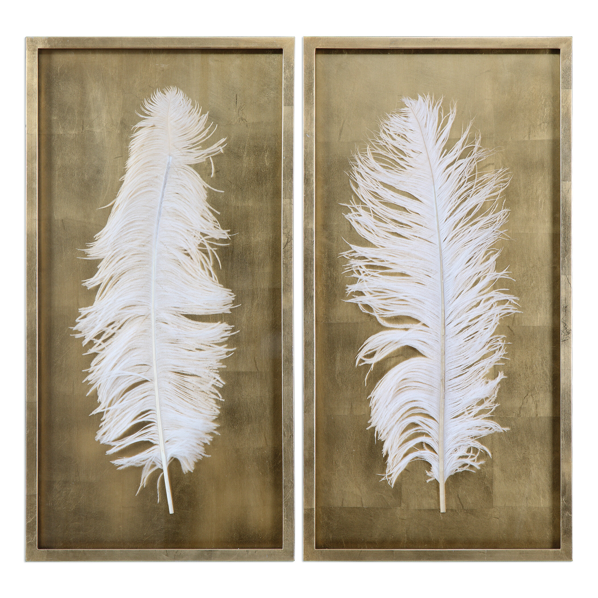 2 Piece Feathers Shadow Box Wall Decor Set Reviews Allmodern