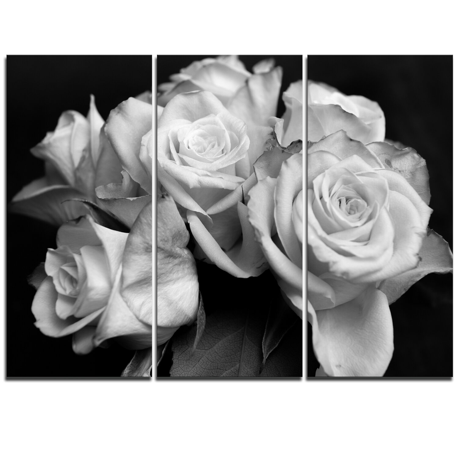 Designart Bunch Of Roses Black And White 3 Piece Graphic Art On