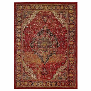 City Antique Faded Look Red Area Rug
