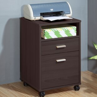 Attractive Mobile Printer Stand With Storage Cabinet
