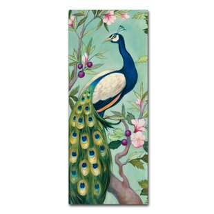 U0027Pretty Peacock IIu0027 Print On Wrapped Canvas