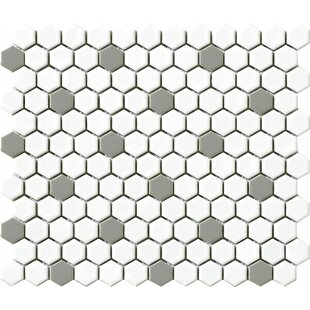Vintage Hexagon 1 X Porcelain Mosaic Tile