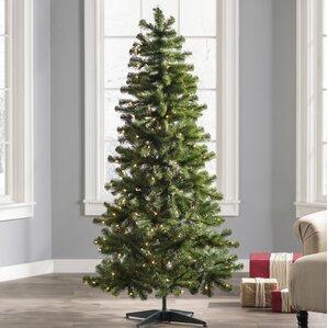 Christmas Trees You'll Love Wayfair - 6 Ft Christmas Tree