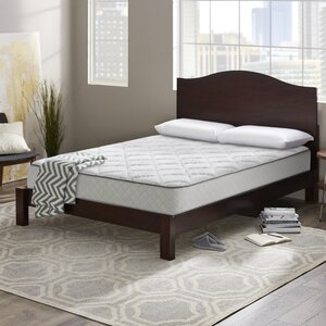 Wayfair Sleep 10