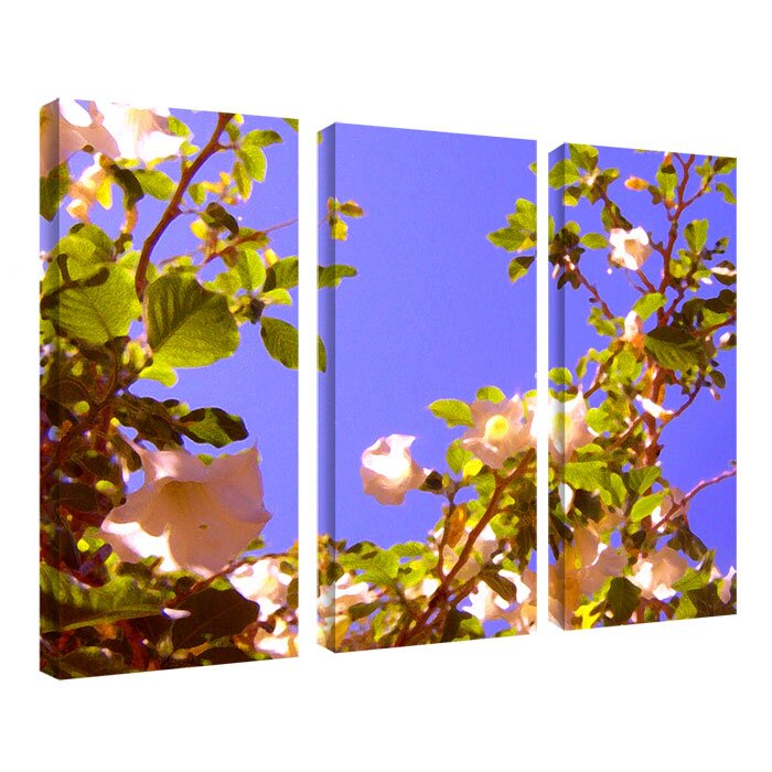 """Flowering Tree II"" by Amy Vangsgard 3 Piece Photographic Print on Wrapped Canvas Set"