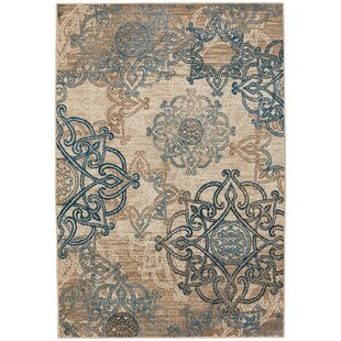 Indoor Entryway Rugs Wayfair