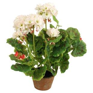 tall flower pots | wayfair