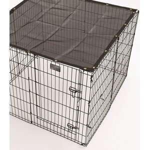 Exercise Pen Sunscreen Top
