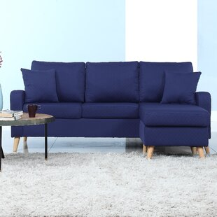 https://secure.img2-fg.wfcdn.com/im/38491625/resize-h310-w310%5Ecompr-r85/3888/38884357/shaina-reversible-sectional.jpg